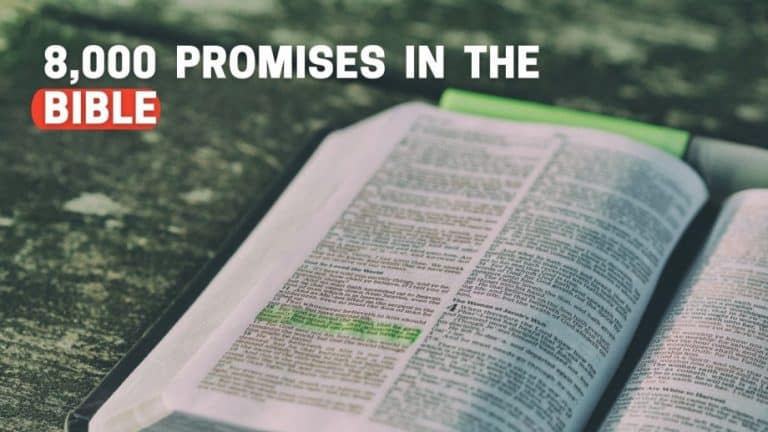 Gods Promises [8000 Promises In The Bible]