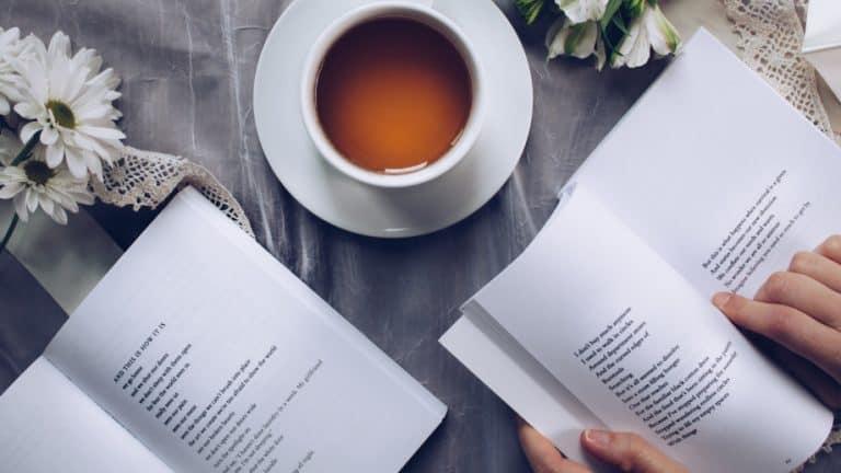 15 Best Christians Premarital Counseling Books